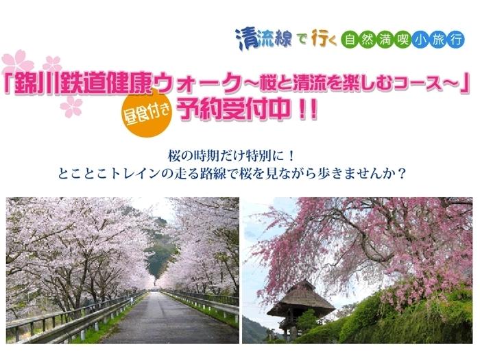 錦川鉄道健康ウォーク とことこトレイン走行コース(桜)